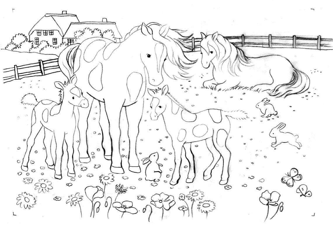 pferde ausmalbilder kostenlos zum ausdrucken