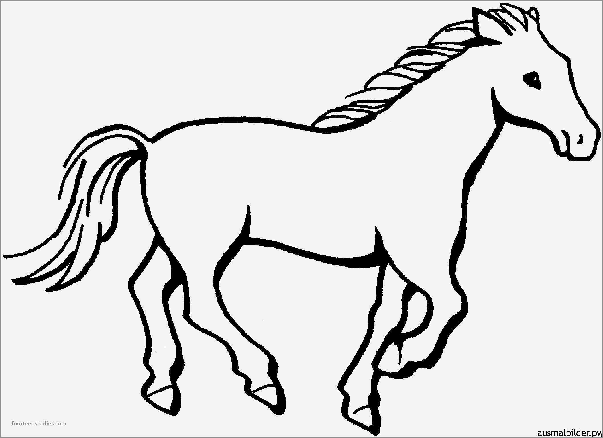 Pferde Ausmalbilder #ausmalbilder #pferde | Ausmalbilder in Pferde Bilder Zum Ausmalen Und Ausdrucken