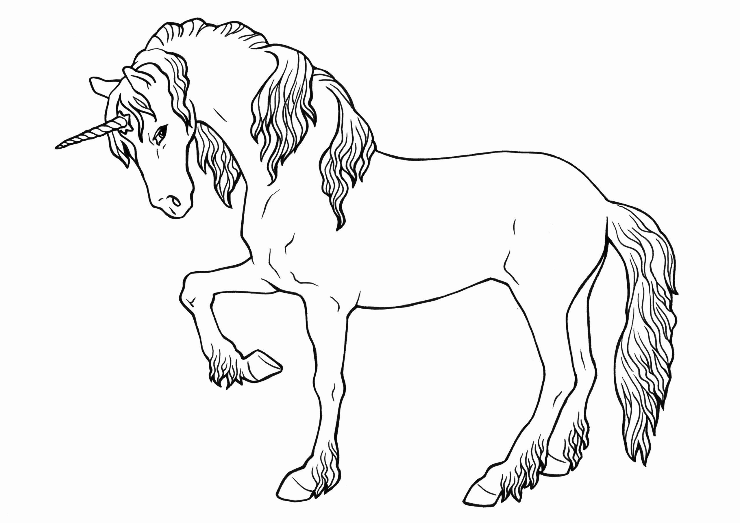 Pferde Zum Ausdrucken Luxus 44 Frisch Bilder Pferdebilder in Pferdebilder Zum Ausdrucken Gratis