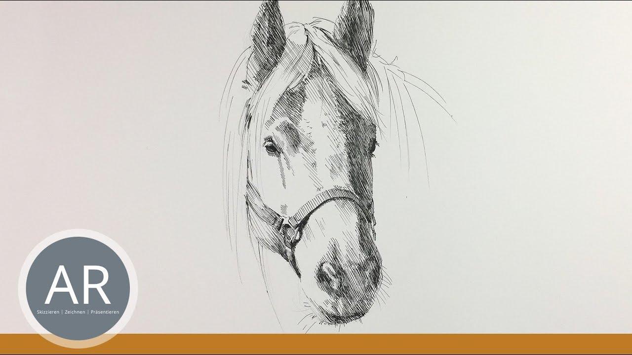 Pferdekopf Zeichnen. Pferde Zeichnen Lernen. Pferde-Portraits. Mappenkurs  Kunst. ganzes Steigendes Pferd Zeichnen