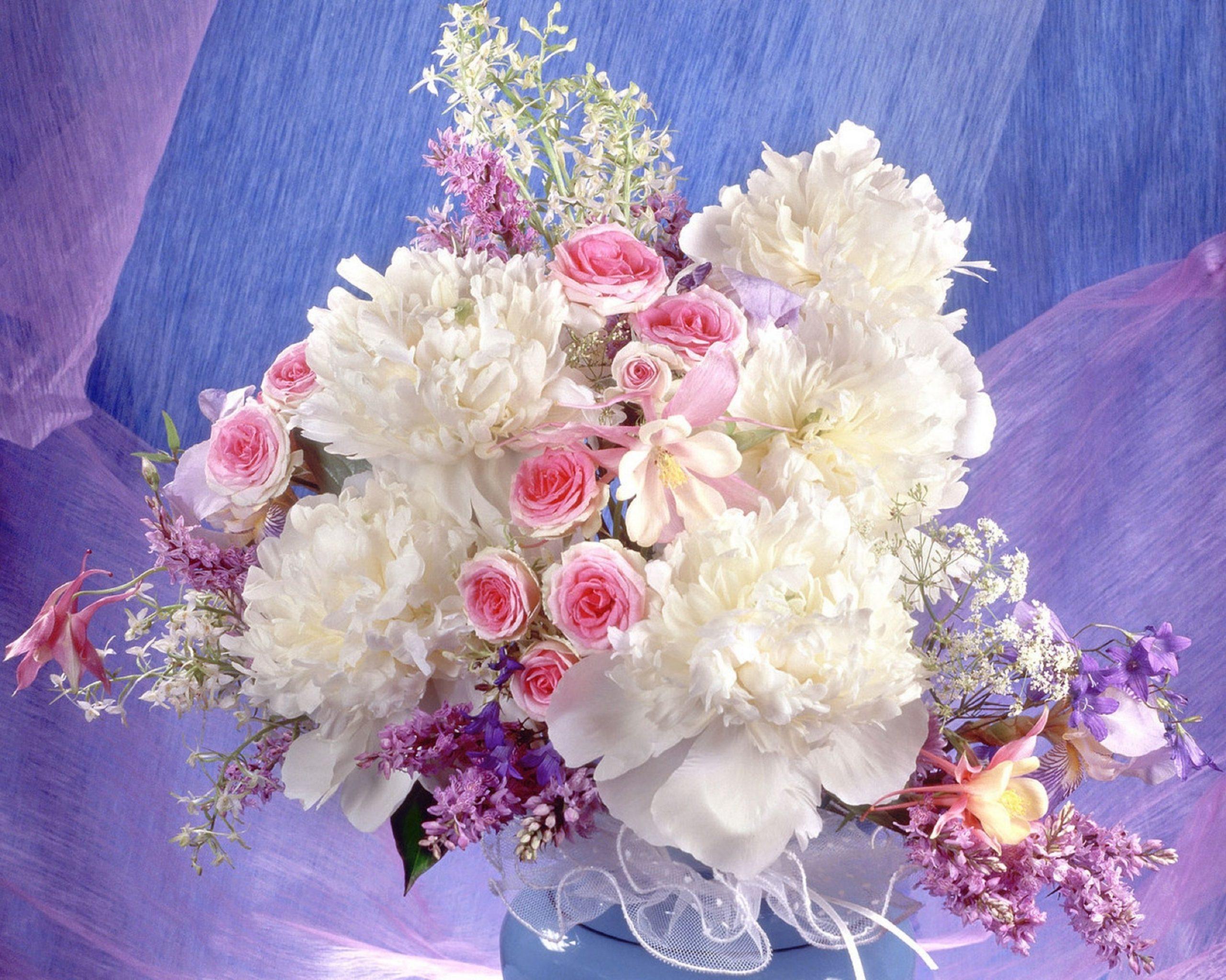 Pfingstrosen, Rosen, Blumen, Lied, Blume, Dekoration in Bilder Blumen Kostenlos