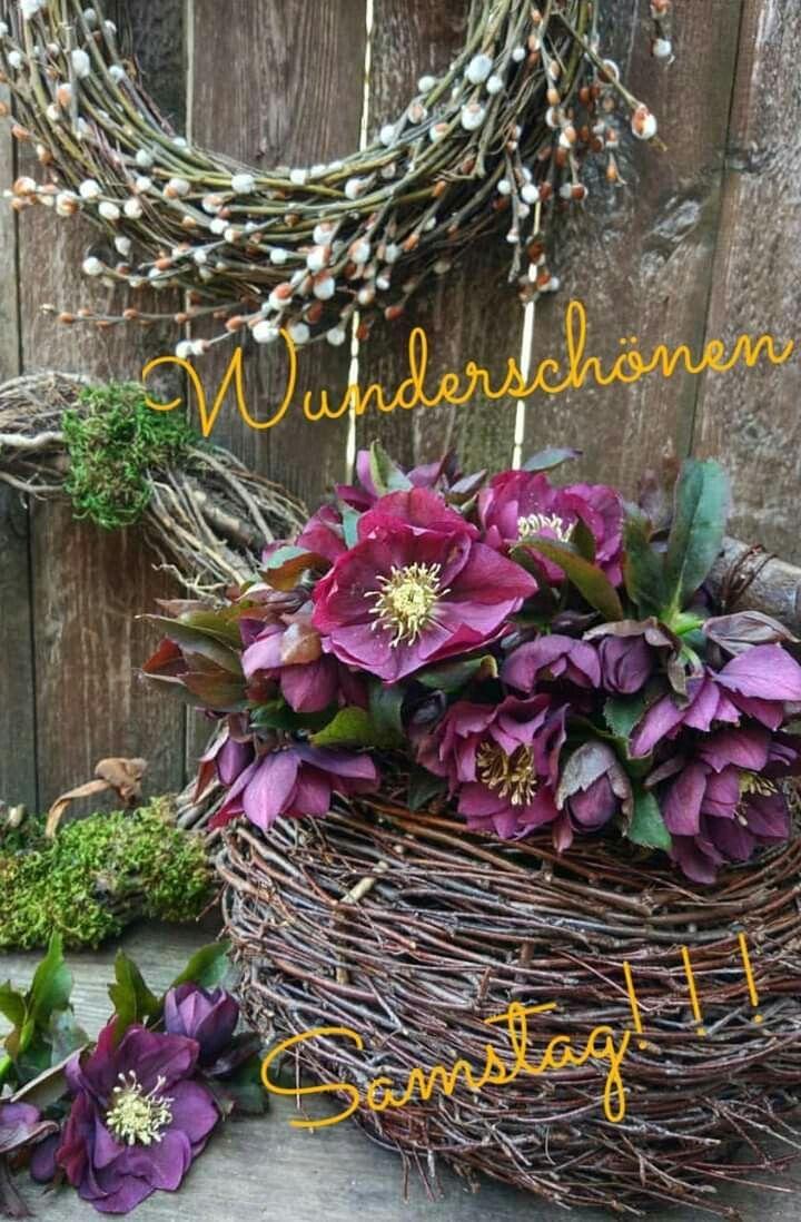 Pin Auf Samstag Bilder über Lustige Blumenbilder