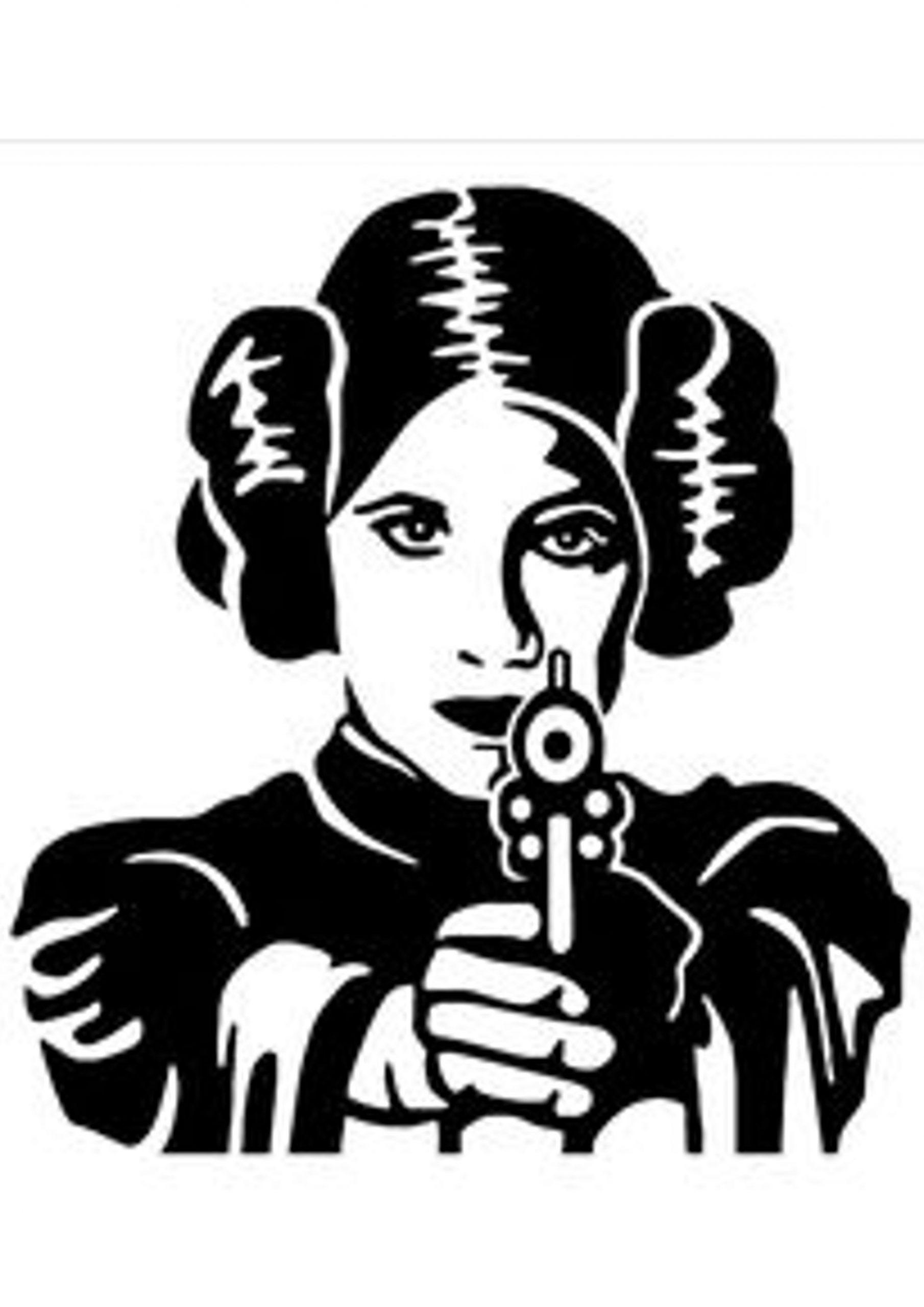 Pin Von Chelsea Steen Auf Cricut In 2020 | Star Wars ganzes Prinzessin Schablonen Zum Ausdrucken