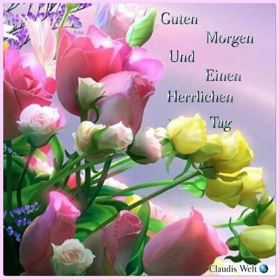 Pin Von Heike Bartsch Auf Guten Morgen | Guten Morgen Bilder über Lustige Blumenbilder