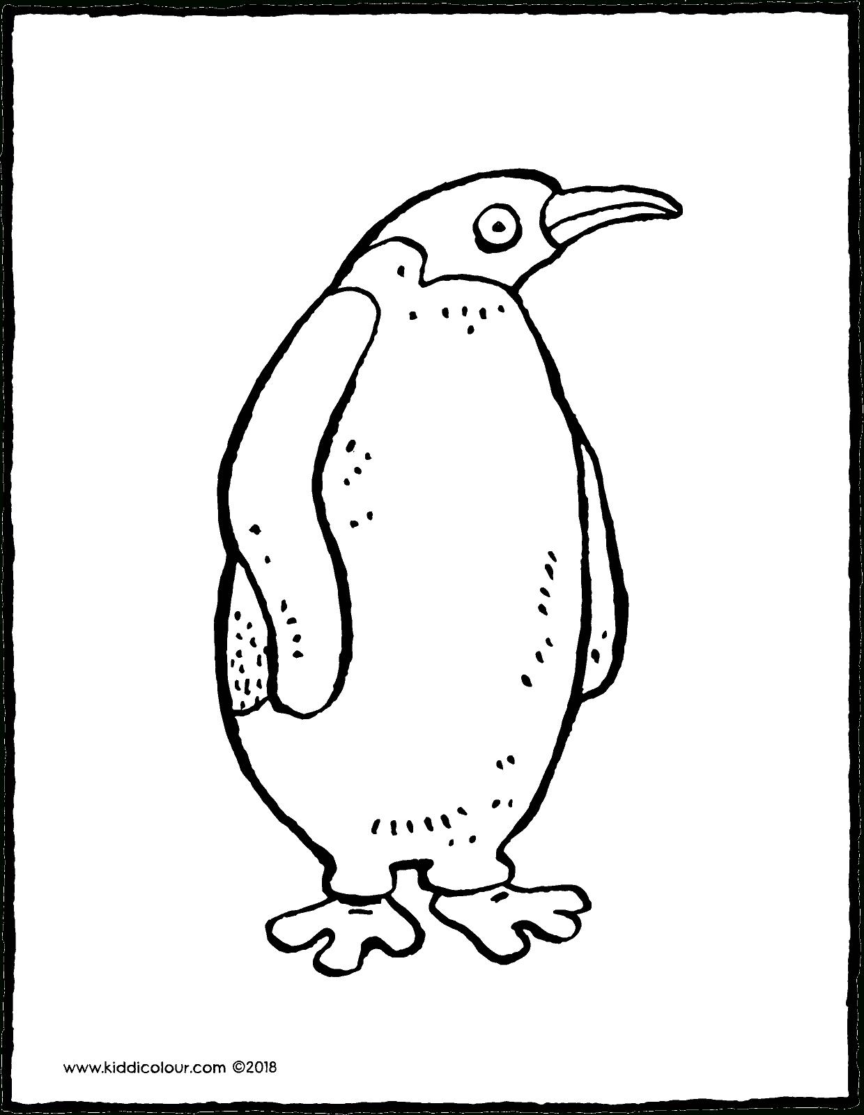 Pinguin - Kiddimalseite mit Pinguin Malvorlage