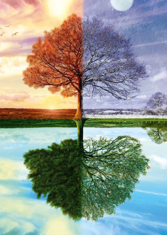 Puzzle Jahreszeiten Baum für 4 Jahreszeiten Baum