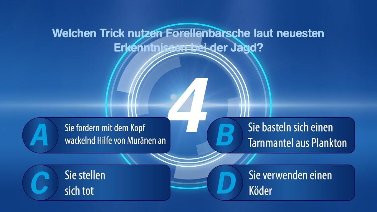 Quiz   Quizfragen   Fragen Und Antworten   Allgemeinwissen Quiz   innen Fragen Zum Allgemeinwissen Mit Antworten
