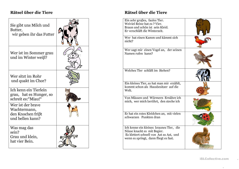 Rätsel Über Die Tiere - Deutsch Daf Arbeitsblatter für Kinderrätsel Tiere