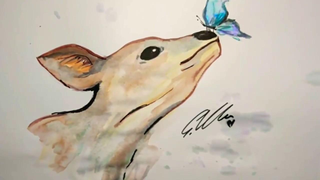 Reh Zeichnen Watercolor Brush über Reh Zeichnen