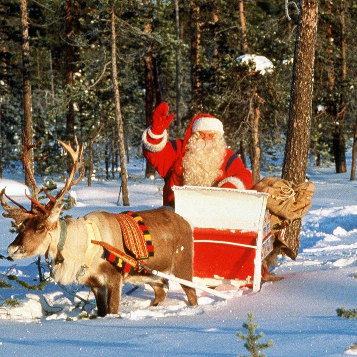 Rentiere Weltweit Im Stress - Und Nicht Wegen Dem mit Weihnachtsmann Rentierschlitten