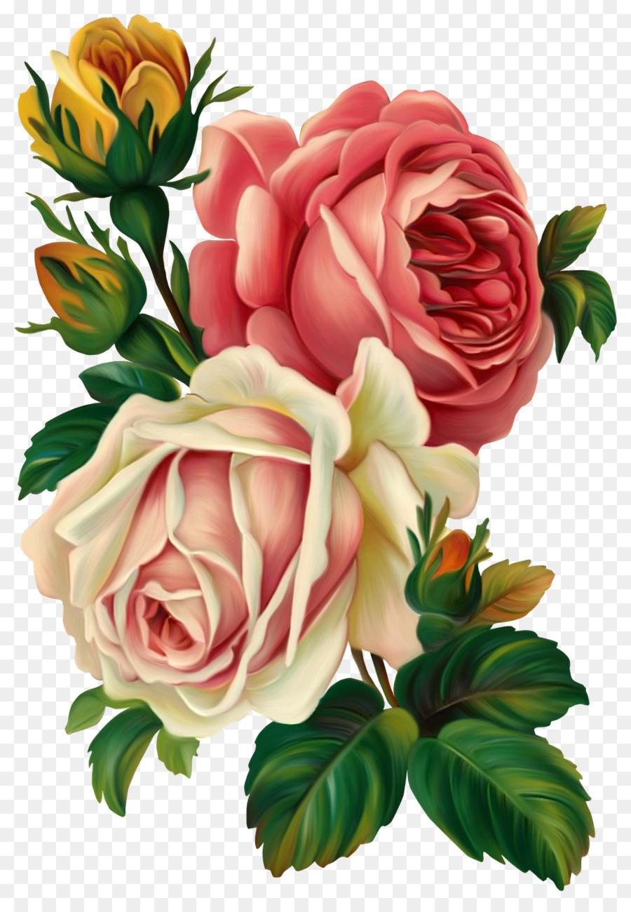 Rose Blume, Vintage-Kleidung, Rosa, Clip-Art - Gemalt Blumen bestimmt für Rosen Bilder Gemalt