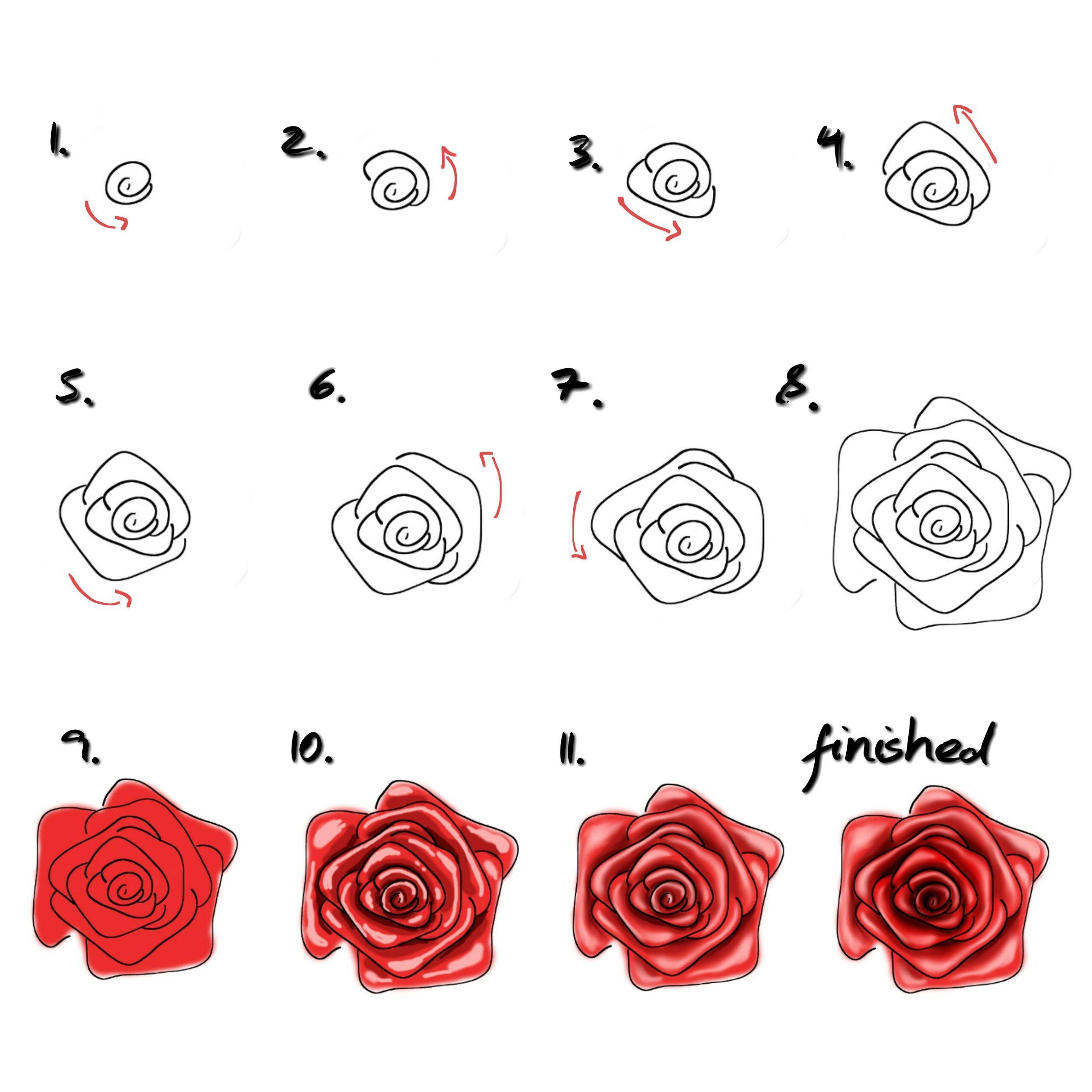 Rose Malen Für Anfänger - Einfaches Tutorial/ Malen Lernen mit Zeichnungen Für Anfänger