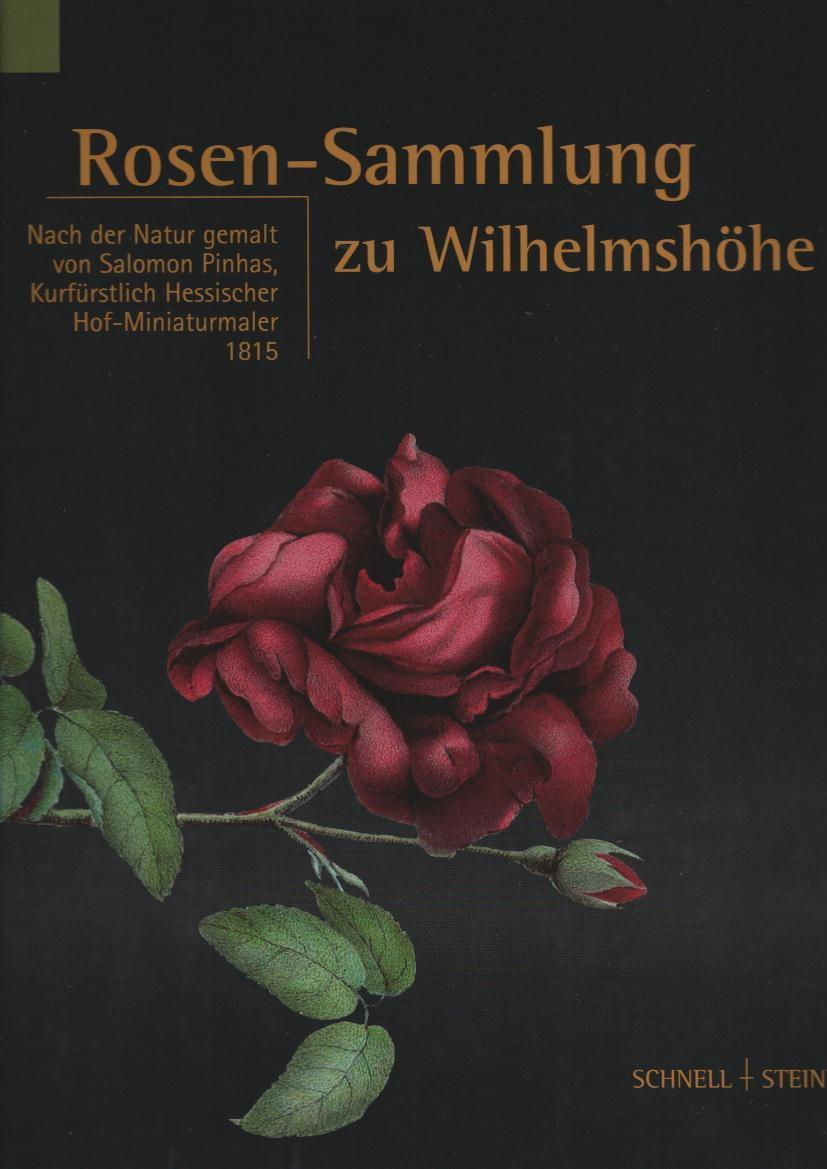 Rosen-Sammlung Zu Wilhelmshöhe : 1815. Nach ganzes Rosen Bilder Gemalt