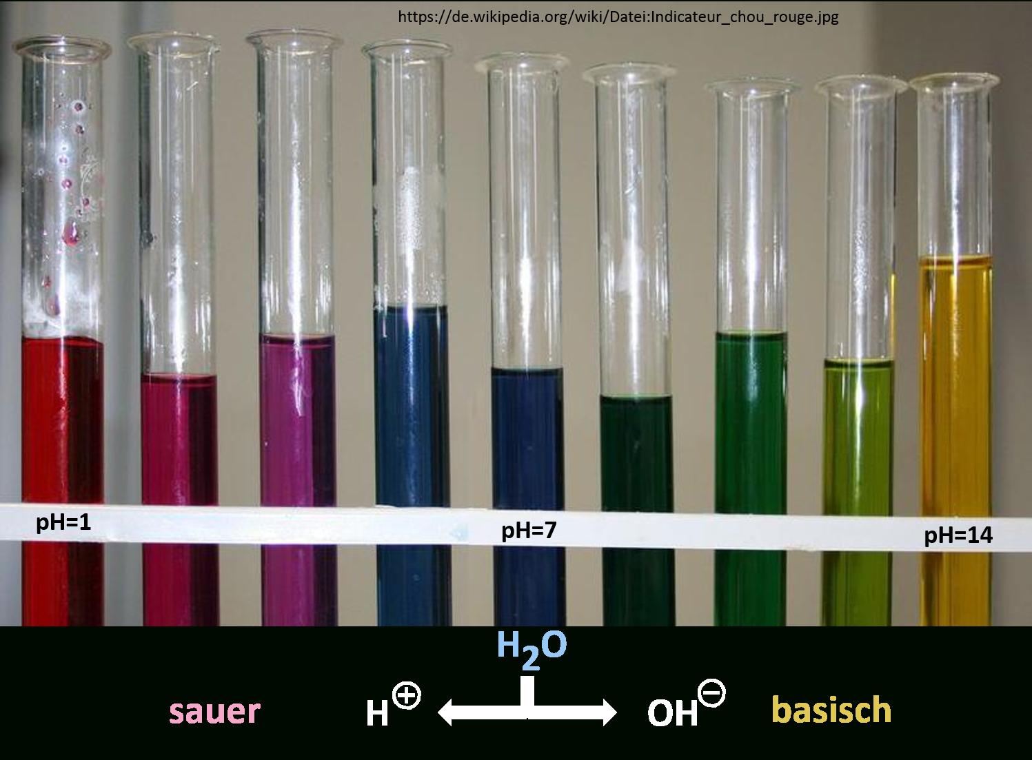 Rotkohl Ph-Indikator » Labosium bestimmt für Rotkohlsaft Indikator