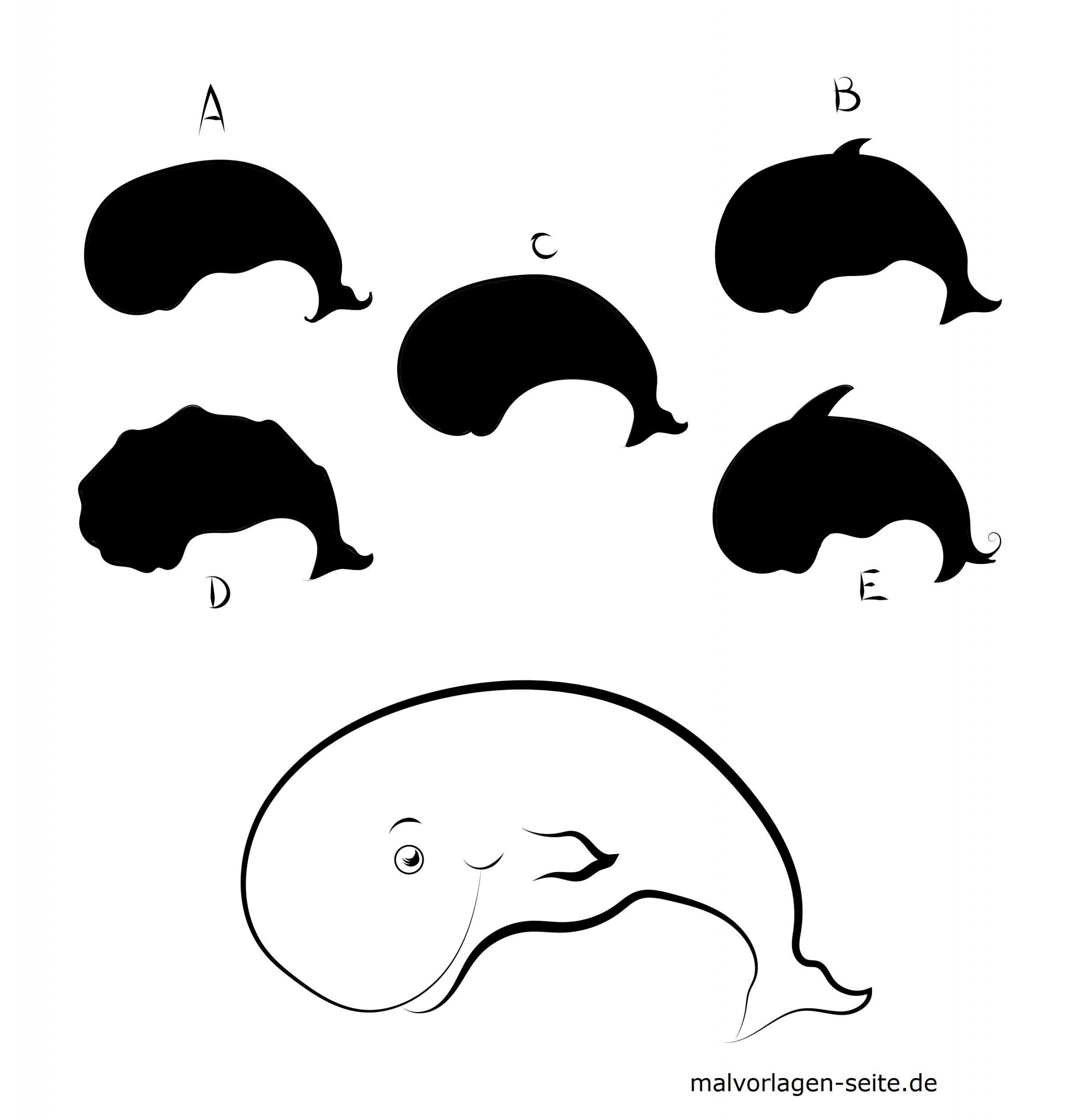 Schattenrätsel Tiere - Wal Rätsel - Ausmalbilder Kostenlos verwandt mit Rätsel Für Kindergartenkinder Tiere