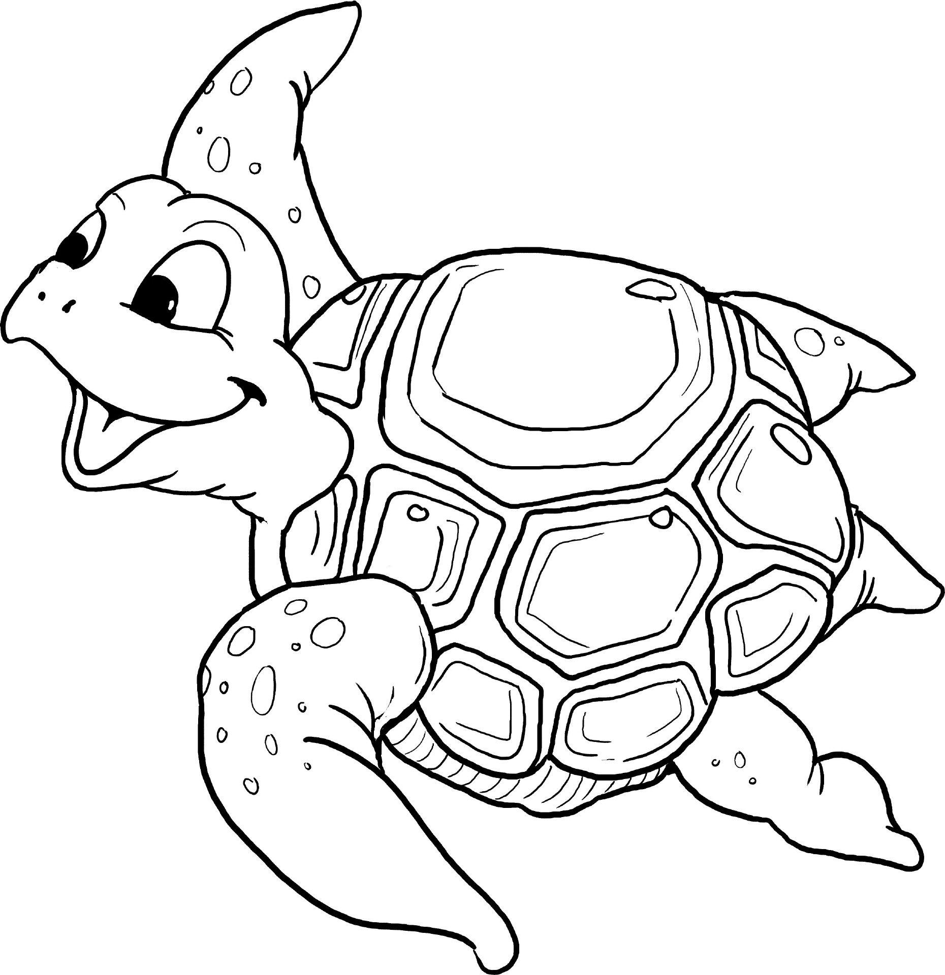 Schildkroete   Ausmalbilder, Ausmalen, Ausmalbilder Tiere verwandt mit Schildkröte Ausmalbild