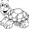 Schildkröte (Mit Bildern) | Ausmalbilder Schildkröte bestimmt für Schildkröte Ausmalbild