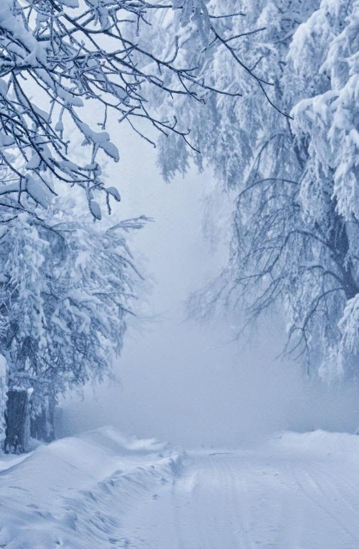 Schneenichts Als Schnee (Mit Bildern) | Landschaft verwandt mit Winterbilder Zum Ausdrucken