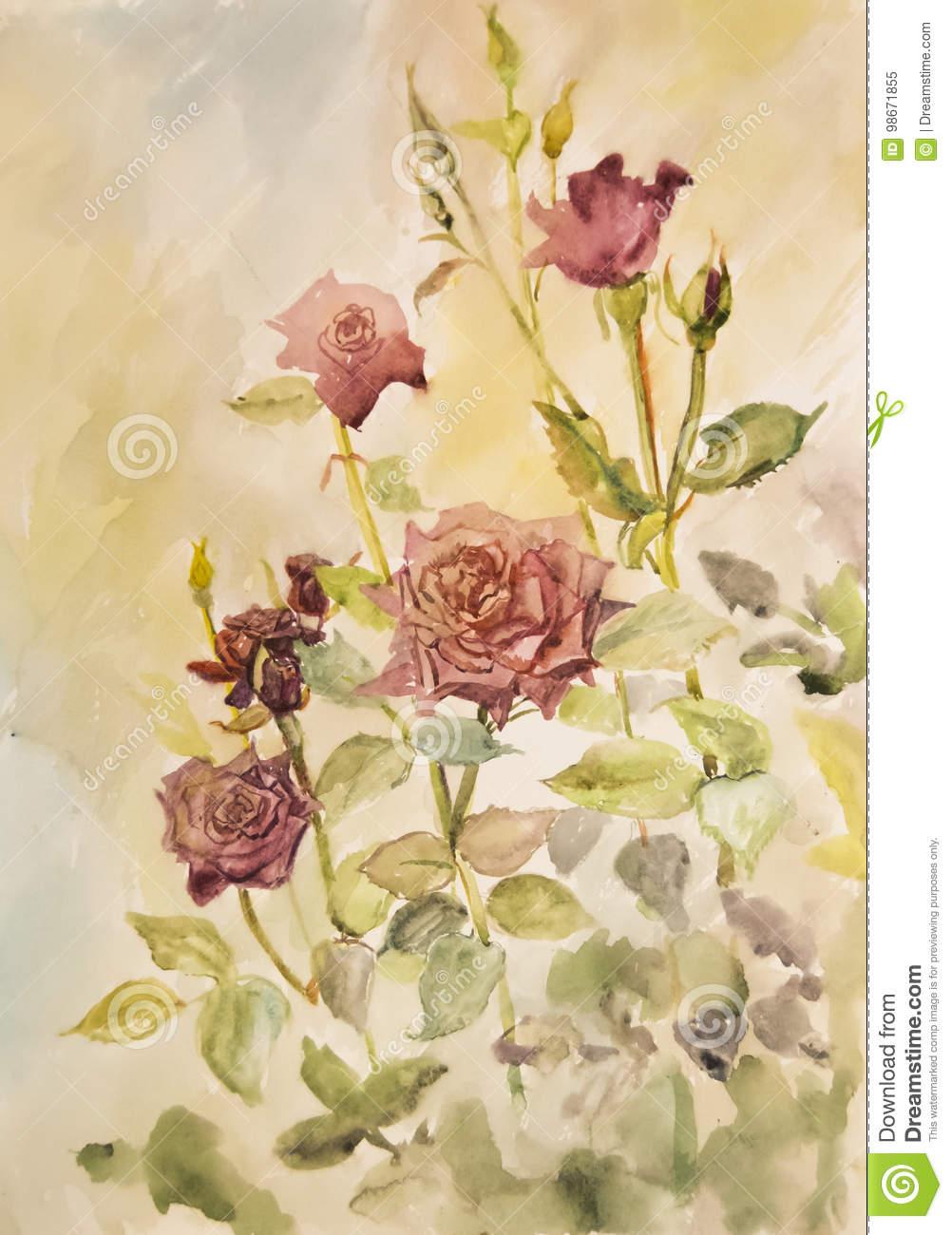Schöne Rote Rosen Im Garten Gemalt Im Aquarell Stockbild bestimmt für Rosen Bilder Gemalt