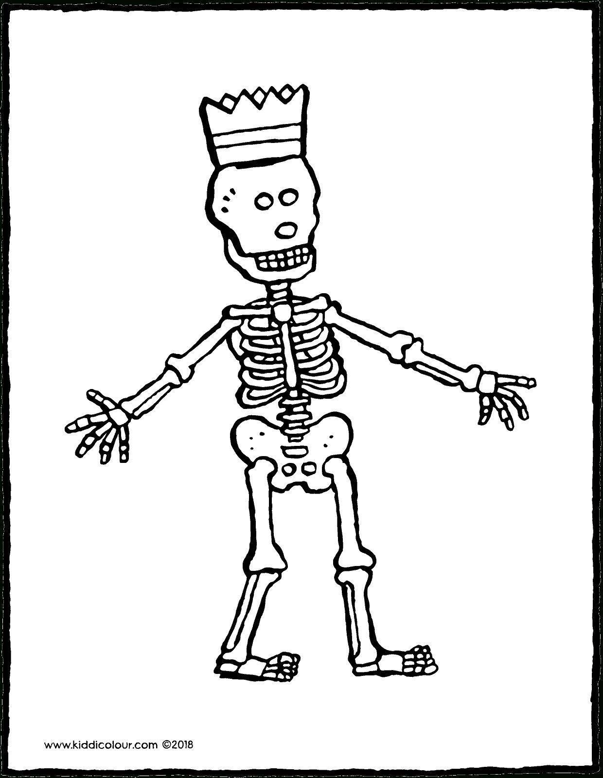 Skelett - Kiddimalseite ganzes Skelett Ausdrucken