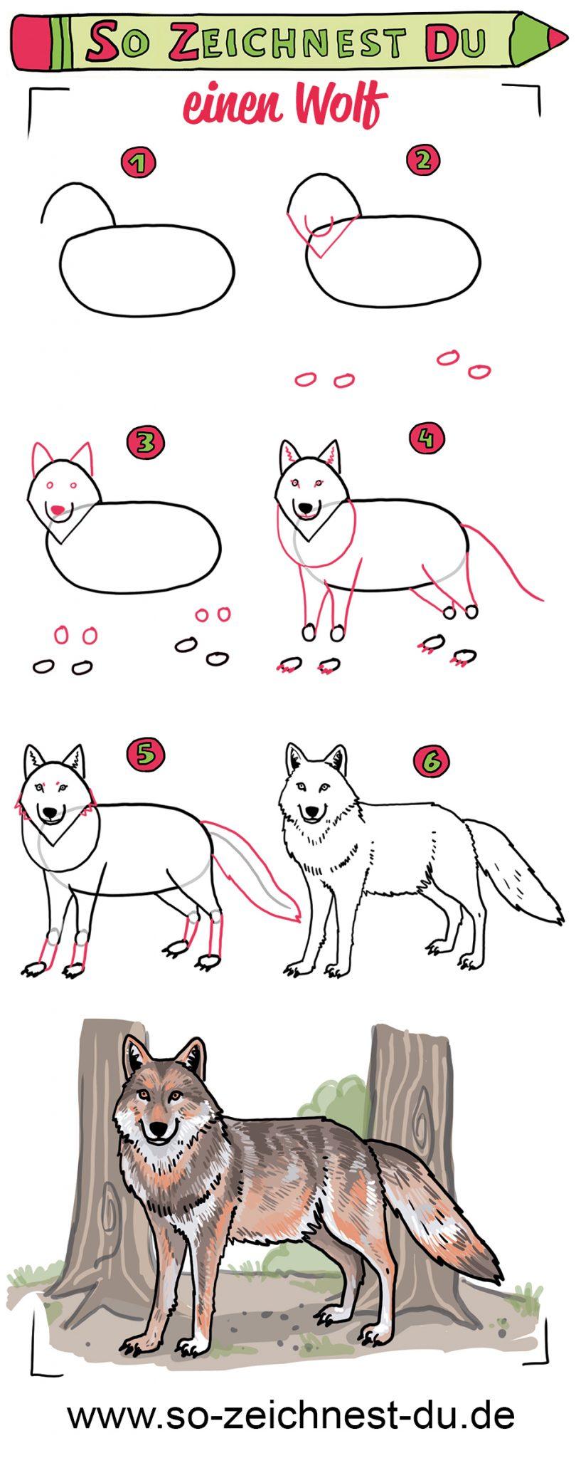 So Zeichnest Du Einen Wolf - So Zeichnest Du mit Wölfe Zeichnen