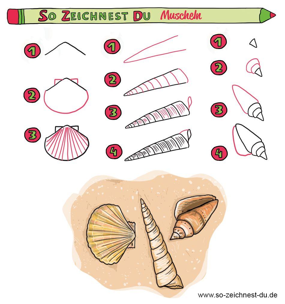 So Zeichnest Du Ganz Einfach Wunderschöne Muscheln. Von So bestimmt für Ganz Einfach Zeichnen Lernen