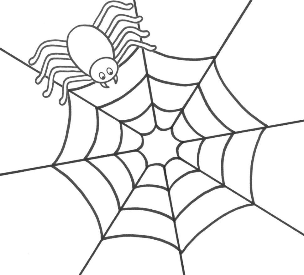 Spinne Ausmalbilder | Ausmalen, Ausmalbilder, Spinnennetz innen Spinnen Ausmalbilder Zum Ausdrucken