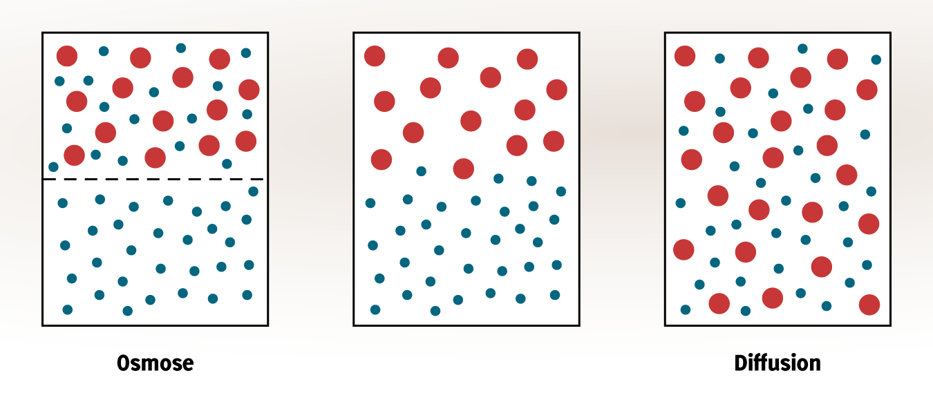 Teilchenmodell Und Aggregatzustände (Fms) - Pdf Free Download mit Lösen Von Zucker In Wasser Teilchenmodell