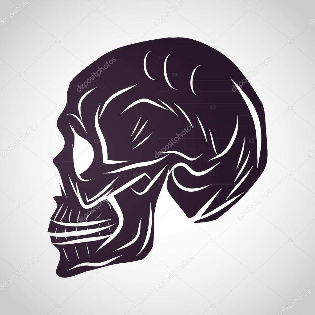 Totenkopf-Logo-Design-Vorlage — Stockvektor über Totenkopf Vorlage