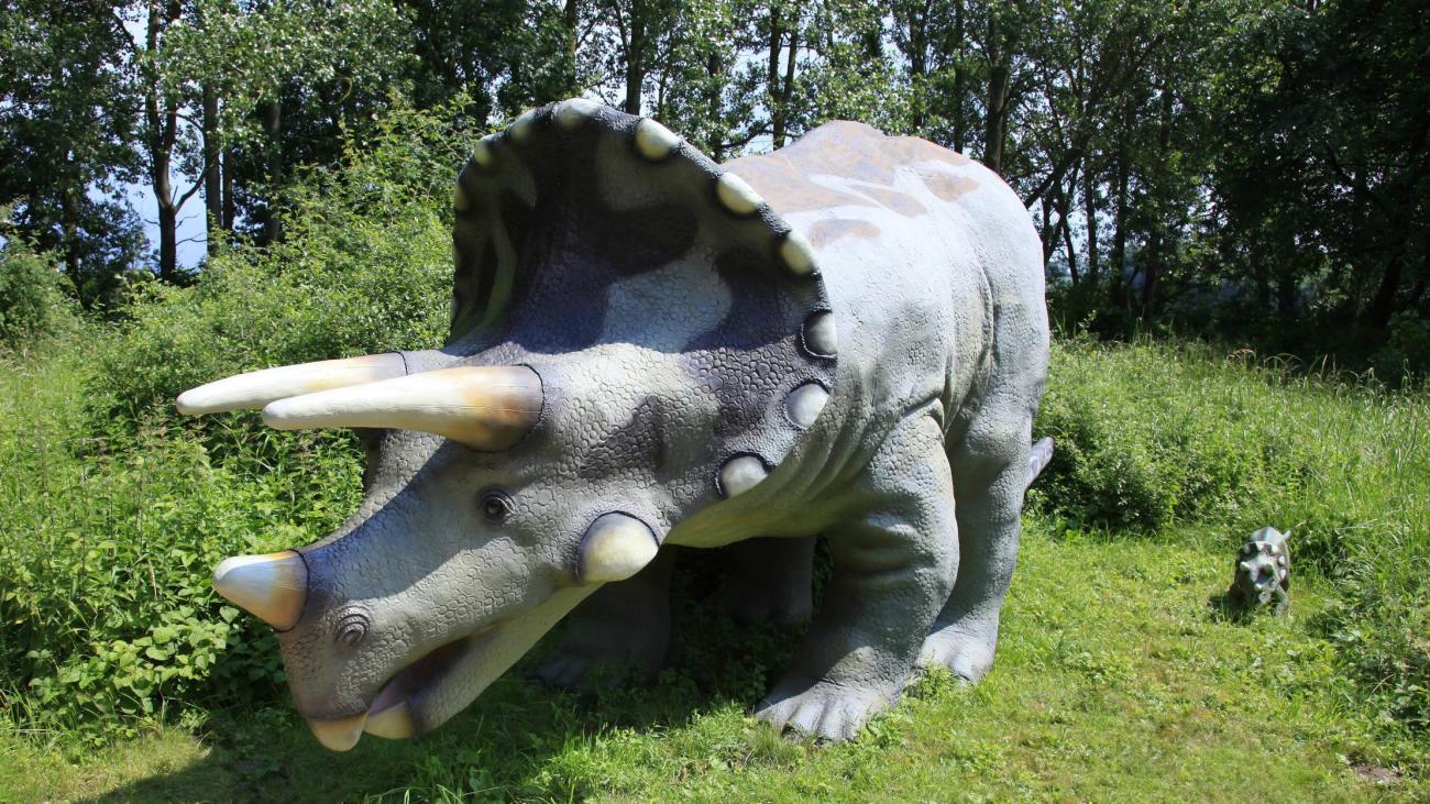 Triceratops: Dino Auf Britischer Straße Amüsiert Das bestimmt für Dreihorn Dinosaurier