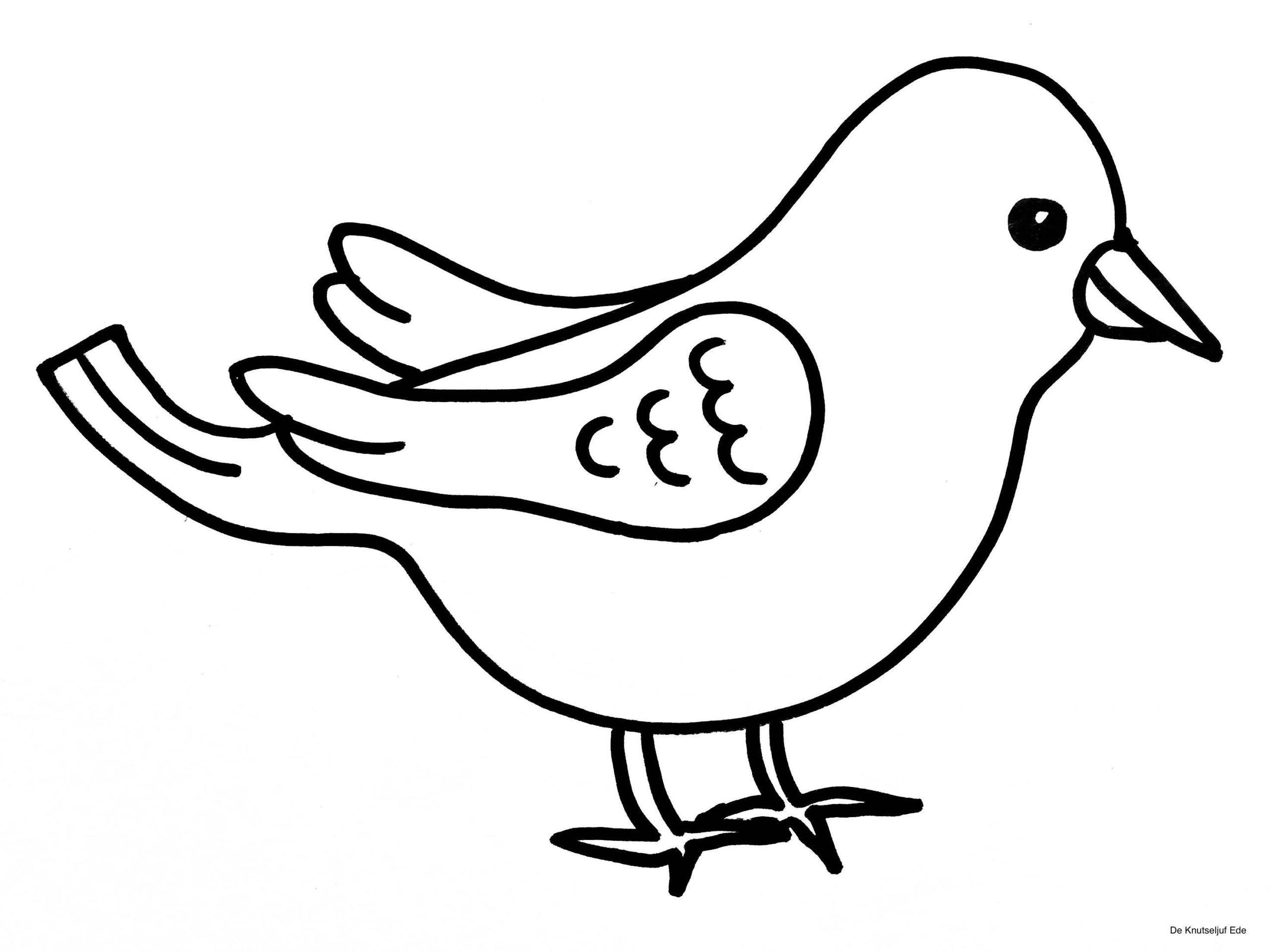 Vögel Färben Ausmalbilder Ausmalbilder Vögel Ausmalbilder für Malvorlagen Vögel