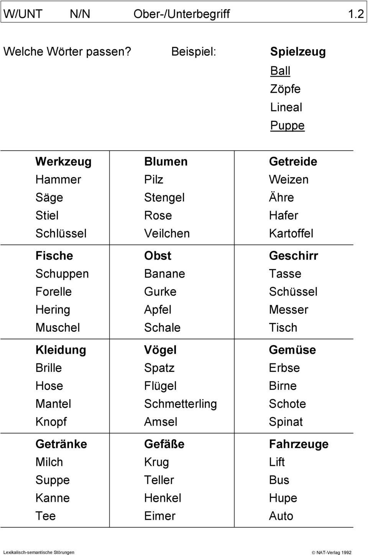 W/unt N/n Ober-/unterbegriff 1.1. Welche Wörter Passen bei Wörter Mit N