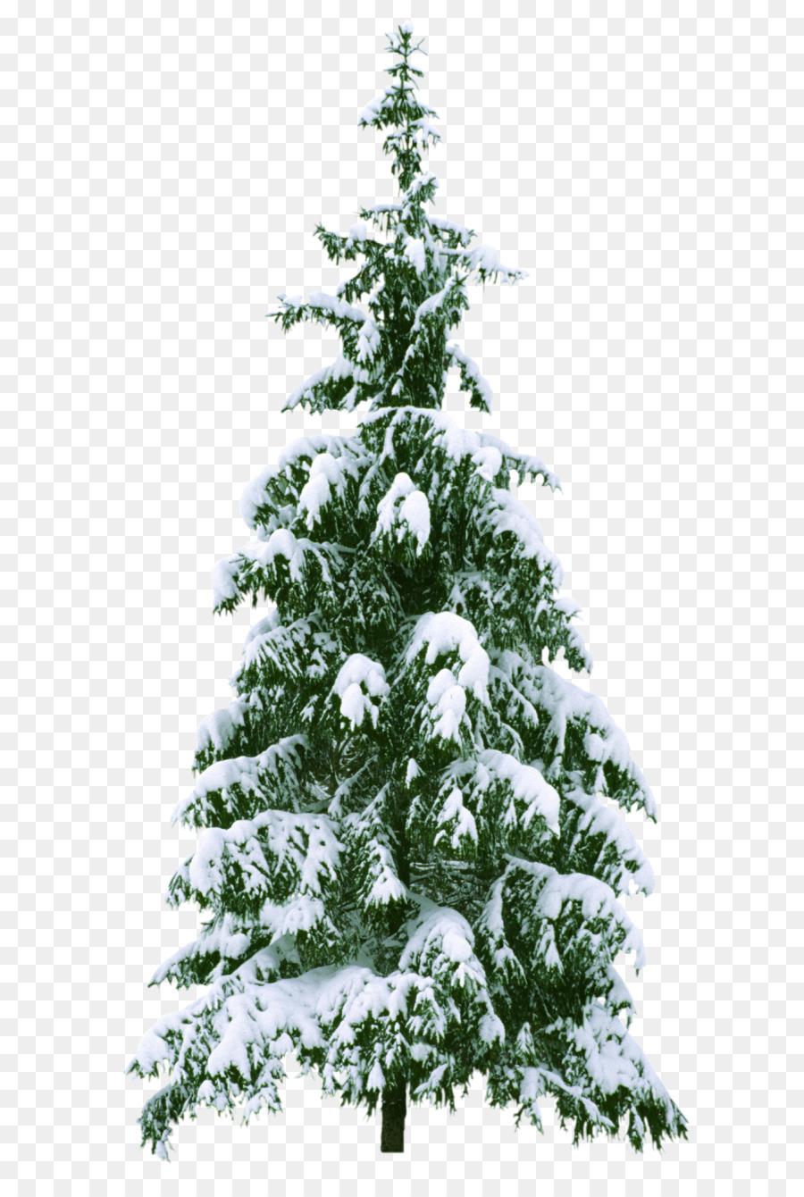 Weihnachtsbaum Tannenbaum - Weihnachtsbaum Png Herunterladen innen Tannenbaum Fotos Kostenlos
