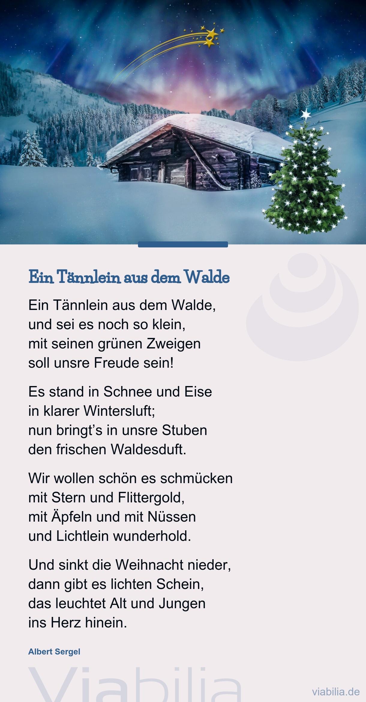 Weihnachtsgedicht: Ein Tännlein Aus Dem Walde - Weihnachtsgruß mit Schöne Und Kurze Weihnachtsgedichte
