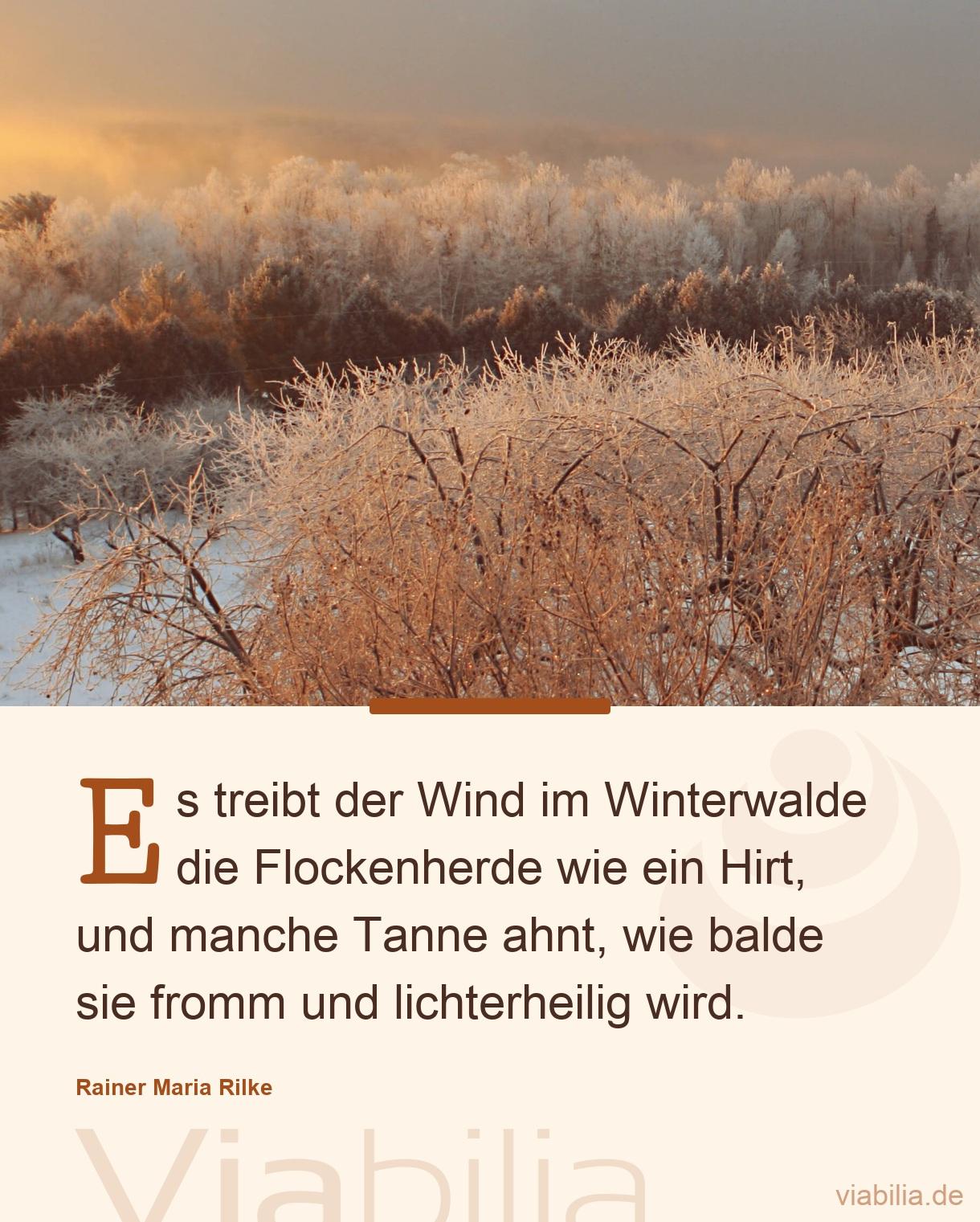 Weihnachtsgedicht: Es Treibt Der Wind Im Winterwalde ganzes Rainer Maria Rilke Weihnachtsgedichte