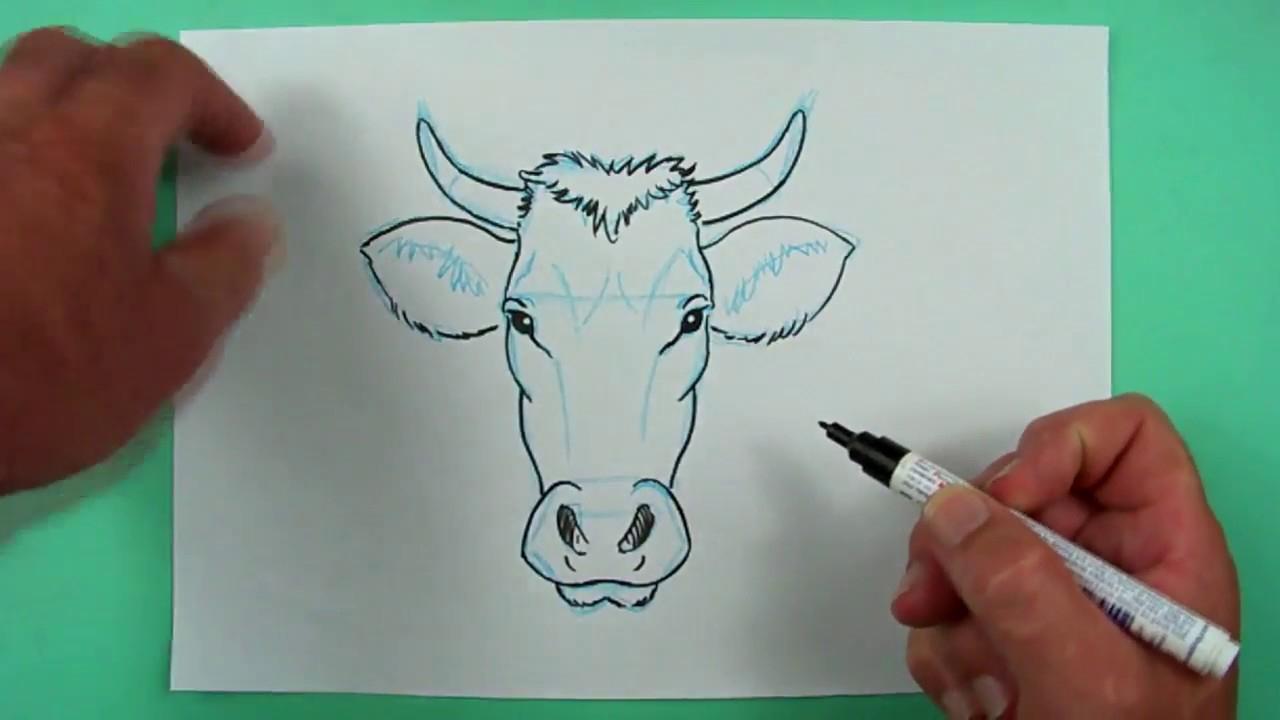 Wie Zeichnet Man Den Kopf Einer Kuh? Zeichnen Für Kinder. mit Kuh Malen