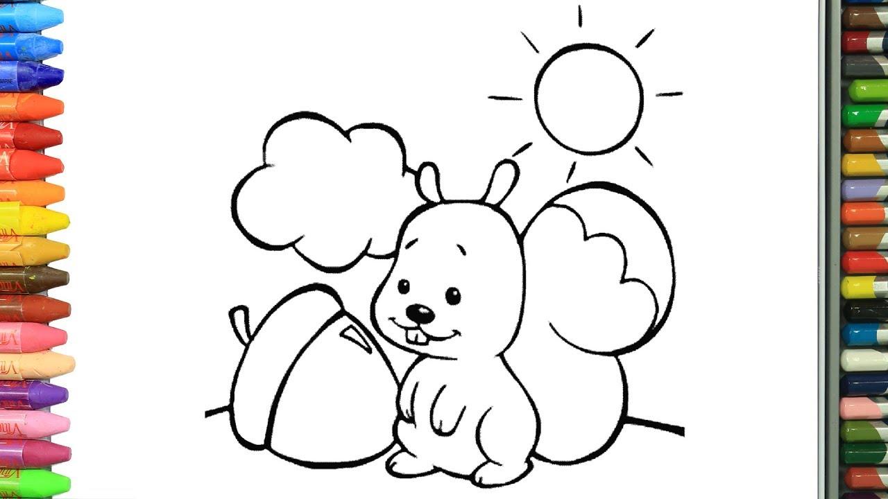 Wie Zeichnet Man Eichhörnchen | Zeichnen Und Ausmalen Für Kinder für Eichhörnchen Zum Ausmalen