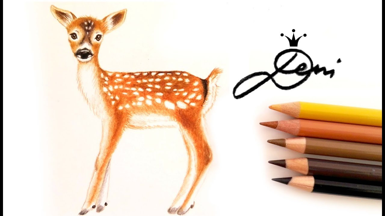 Wie Zeichnet Man Ein Reh 🦌 How To Draw A Fawn 🦌 Как Се Рисува Сърна bestimmt für Reh Zeichnen