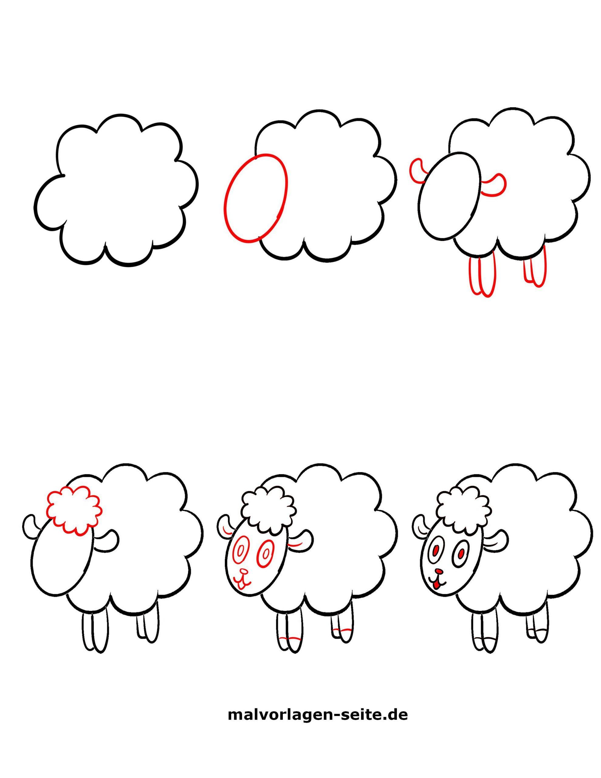 Wie Zeichnet Man Ein Schaf - Ausmalbilder Kostenlos bei Schaf Malen