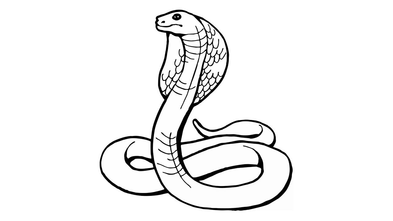 Wie Zeichnet Man Eine Schlange (Kobra, Naja, Tiere) bestimmt für Schlange Zum Ausmalen