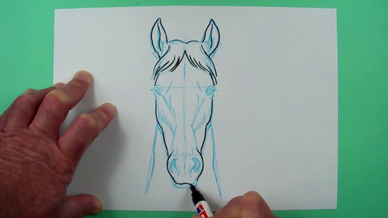 Wie Zeichnet Man Einen Pferdekopf Von Vorn? Zeichnen Für Kinder. über Pferdekopf Malen