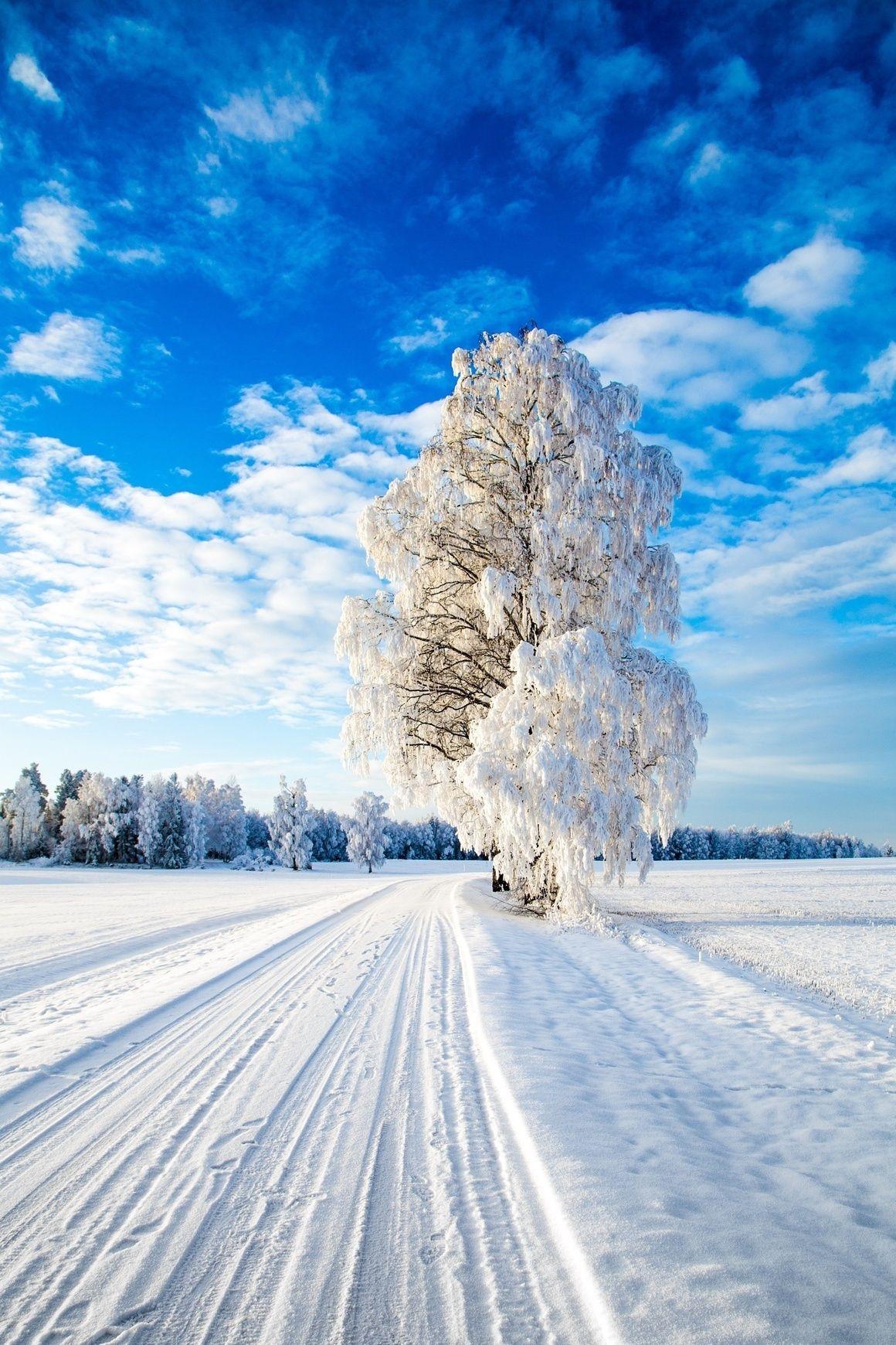 Winter Wonderland By Sven-Erik Lundby | Naturbilder über Winterbilder Zum Ausdrucken