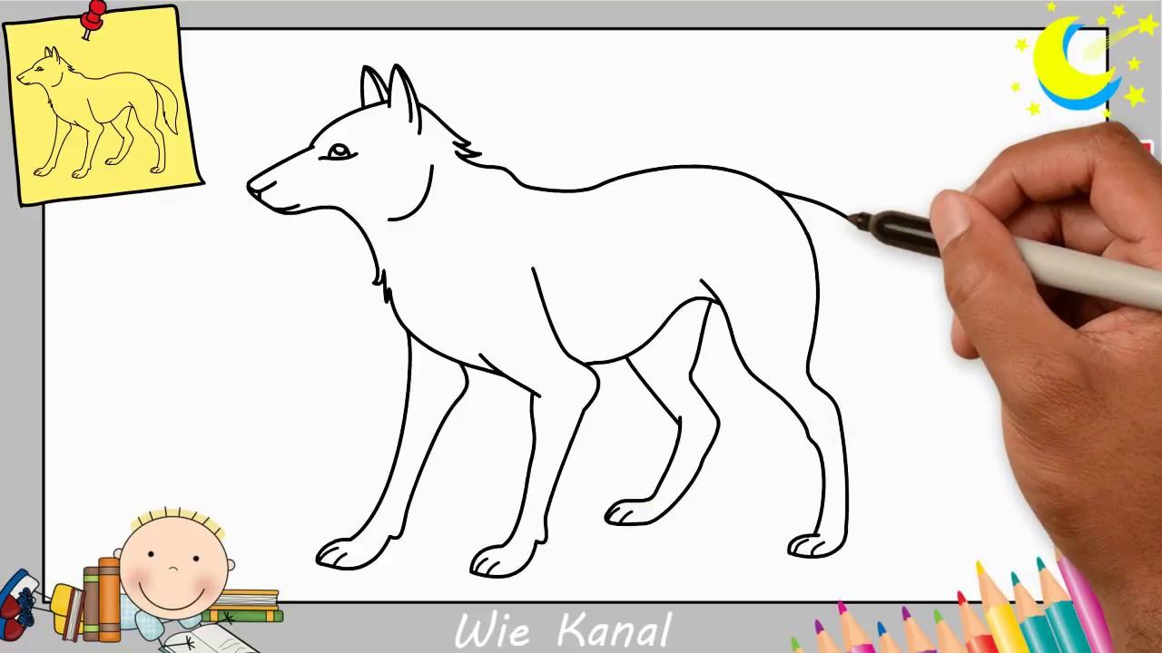 Wolf Zeichnen Lernen Einfach Schritt Für Schritt Für Anfänger & Kinder 2 verwandt mit Wölfe Zeichnen
