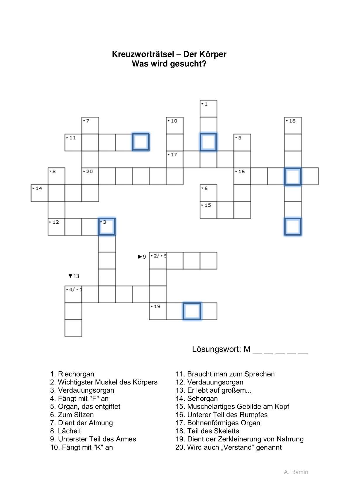 Wortfindung Kreuzworträtsel Körperteile - Sprache für Kreuzworträtsel Muster
