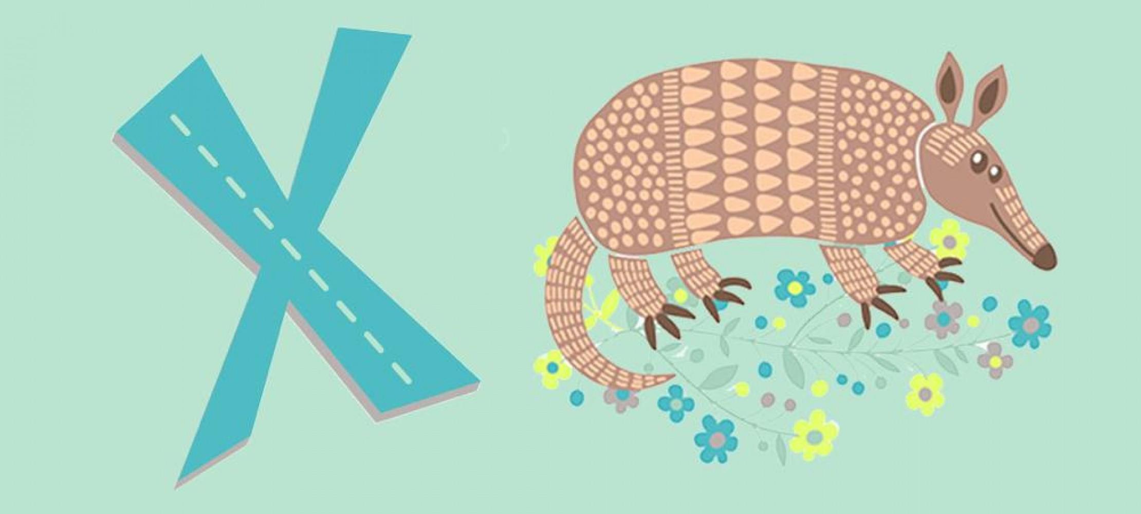 X-Tier | Duda.news verwandt mit Tiere Mit Y Am Anfang