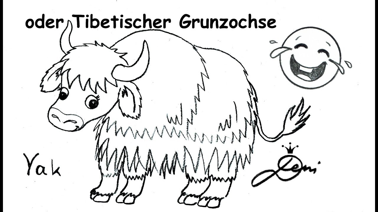 Yak Zeichnen Lernen Schnell Für Kinder 🐂 Tier Mit Y 🐂 How To Draw A Yak 🐂 ganzes Tiere Mit Y Am Anfang