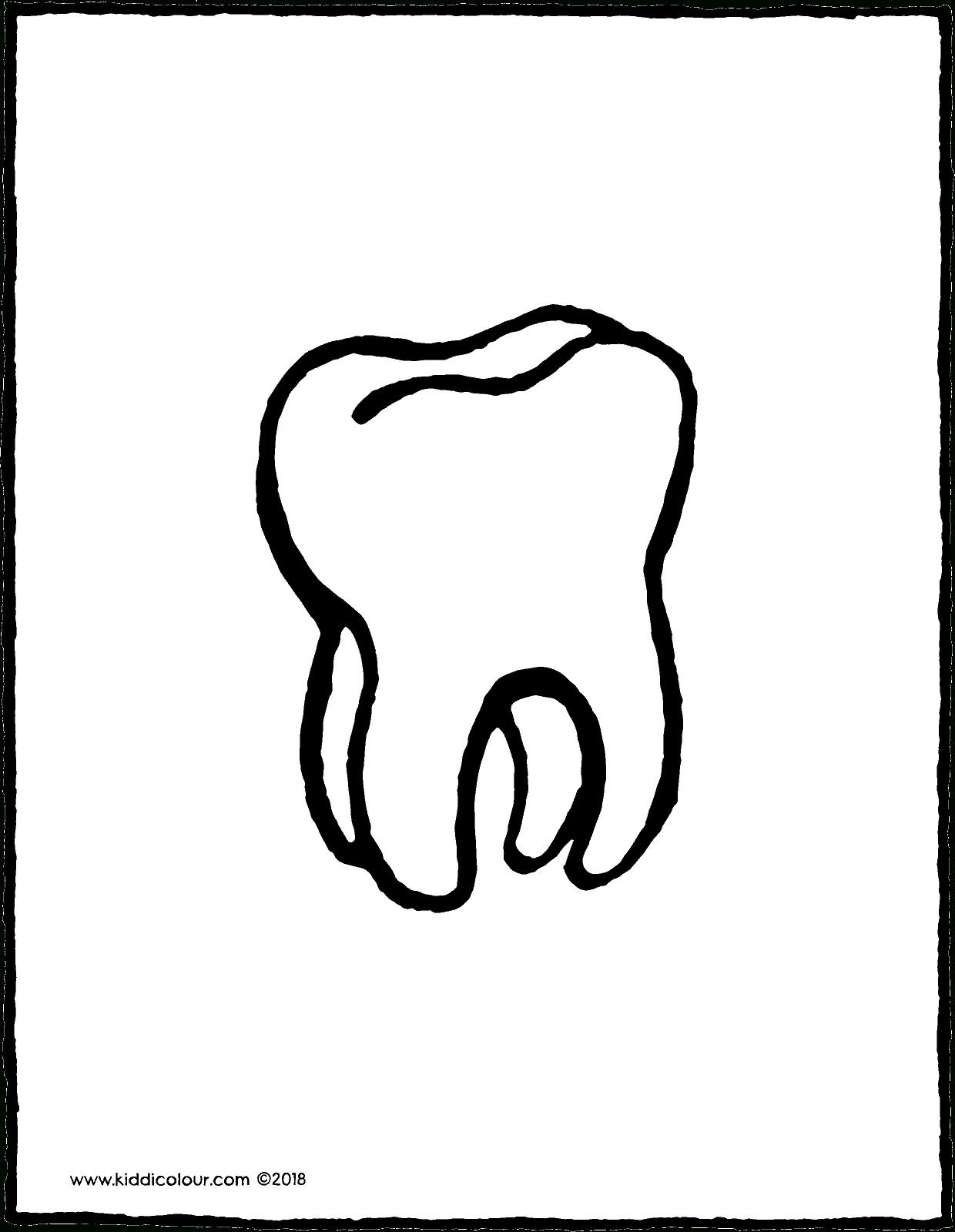 Zahn - Kiddimalseite ganzes Ausmalbild Zahn