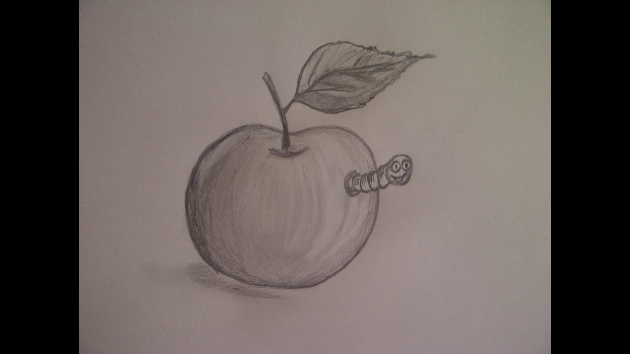 Zeichnen Lernen Für Anfänger. Bio-Apfel ;-) Zeichnen Mit Bleistift. bei Zeichnungen Für Anfänger