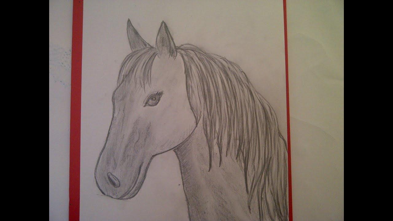 Zeichnen Lernen Für Anfänger. Pferd Malen. Pferdeportrait. Pferdekopf.  Learn To Draw A Horse verwandt mit Pferde Zeichnen Lernen