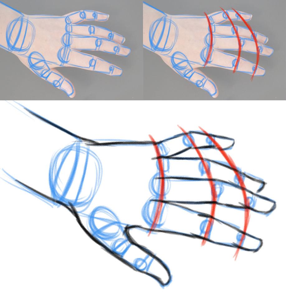 Zeichnen Lernen - Hände Zeichnen - Variationsphase in Hände Zeichnen Lernen